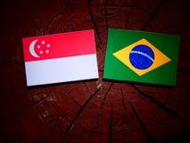 Сингапурский флаг с бразильским флагом на изолированном пне дерева Стоковая Фотография