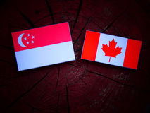 Сингапурский флаг с канадским флагом на изолированном пне дерева Стоковая Фотография RF