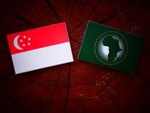 Сингапурский флаг с флагом Африканского Союза на изоляте пня дерева Стоковая Фотография RF