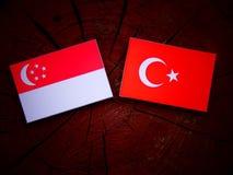 Сингапурский флаг с Turkish сигнализирует на пне дерева Стоковые Изображения