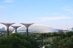 СИНГАПУР - ИЮНЬ 2014: взгляд паза Supertree на саде b Стоковые Фото