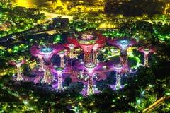 СИНГАПУР - 10-ОЕ ФЕВРАЛЯ 2017: Супер дерево в саде заливом, грехе Стоковое Изображение