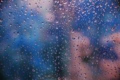 Сине-розовая свежесть после дождя стоковое изображение rf
