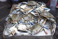 Синие краби проданные на fishmarket стоковое изображение