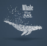 Синий кит, состав частицы дивергентный, изолированный на предпосылке бесплатная иллюстрация