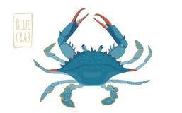 Синий краб, иллюстрация шаржа Стоковые Изображения RF