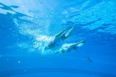 Синхронизированные девушки заплывания команды стоковое фото