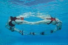 Синхронизированные пловцы формируя круг стоковая фотография rf