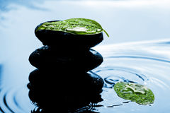синь выходит Дзэн воды камней Стоковая Фотография RF