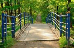 Синь деревянного моста Стоковые Изображения RF