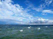 синь заволакивает небо озера Стоковые Изображения RF