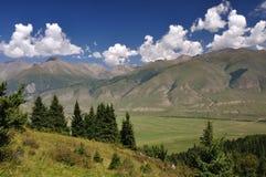 синь заволакивает цветастое небо гор Стоковое фото RF