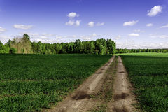 синь заволакивает белизна неба дороги затемненного поле Стоковое Фото