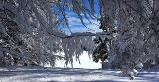 синь заволакивает ручка снежка неба стоковое изображение