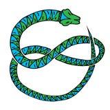 Синь змейки зеленая Стоковое Изображение RF