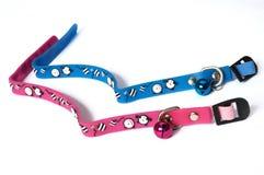 Синь и розовый резиновый воротник кота Стоковое Изображение RF