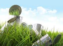 синь консервирует пустое небо травы еды Стоковая Фотография