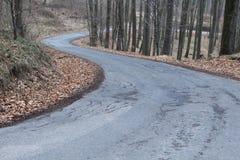 Синь дороги леса стоковое изображение