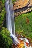 синь падает горы katoomba Стоковая Фотография