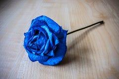 синь подняла Стоковые Фотографии RF