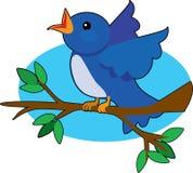 синь птицы Стоковые Фотографии RF