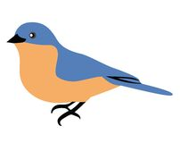 синь птицы Стоковые Изображения