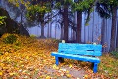 синь стенда Стоковая Фотография RF