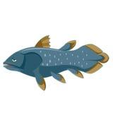 Синь Coelacanth шаржа Стоковые Фото