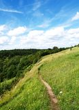 синь fields зеленое небо Стоковые Фото