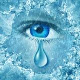 Син зимы Стоковое Изображение RF
