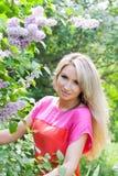 сирень девушки bush стоковая фотография