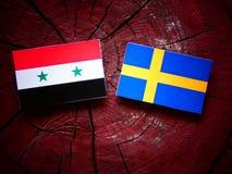 Сирийский флаг с шведским языком сигнализирует на пне дерева Стоковая Фотография RF