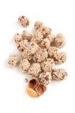 сироп сахара сезама арахиса Стоковая Фотография RF