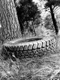Сиротливая автошина Стоковая Фотография RF