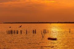 Сиротливая деревянная шлюпка рыболова с чайками когда заход солнца/восход солнца на море стоковая фотография rf