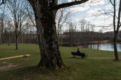 Сиротливая женщина сидя на стенде в парке думая о жизни смотря горизон стоковые изображения rf