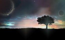 Сиротливое дерево в темной ноче Стоковое фото RF