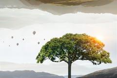 Сиротливое зеленое дерево стоковые фотографии rf