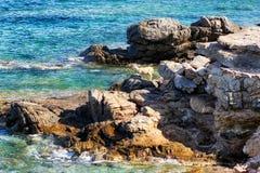 Сиротливые овцы на скалистом seashore стоковые изображения