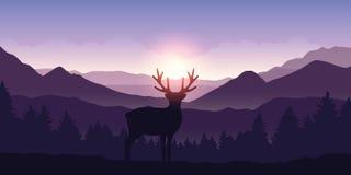 Сиротливые олени в горах на восходе солнца с предпосылкой леса иллюстрация вектора