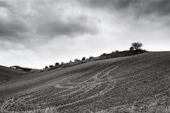 Сиротливые холмы природы искусства под облачным небом стоковые изображения rf