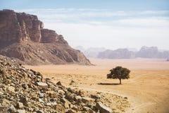 сиротливый вал Ландшафт пустыни Ram вадей Иордан Стоковые Фото