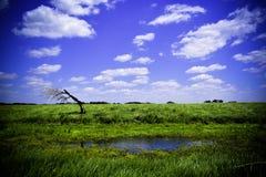 Сиротливый вал Стоковая Фотография RF
