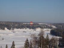 Сиротливый воздушный шар над лесом зимы стоковая фотография