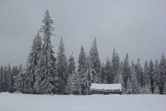 Сиротливый дом в покрытом снег лесе, Карпатах Стоковые Фотографии RF