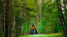 Сиротливый коттедж в уютном лесе стоковое изображение rf