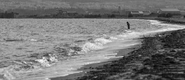 Сиротливый пловец на awindy день стоковое изображение
