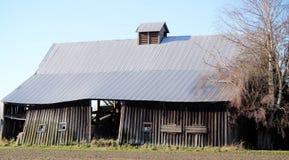 Сиротливый старый дезертированный амбар, падая вниз в поле стоковое изображение