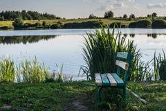 Сиротливый стенд озером Берег озера с травой и малой природой русского леса Стоковое фото RF