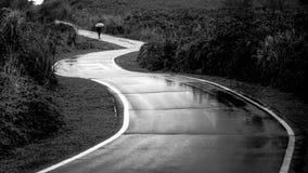 Сиротливый человек идя вдоль ветреного пути стоковые изображения rf